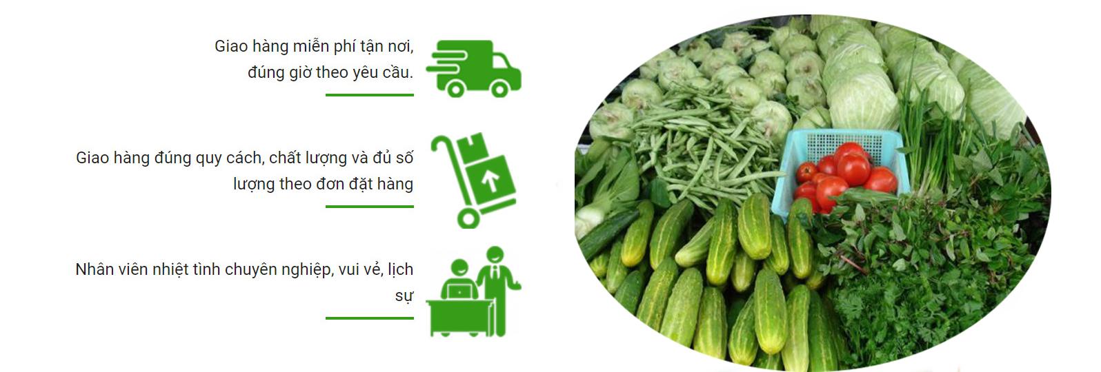 cung cap rau cu qua gia si tai thu duc - Cung cấp rau củ quả tại Thủ Đức